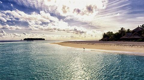 蓝色美人蕉岛旅游图片