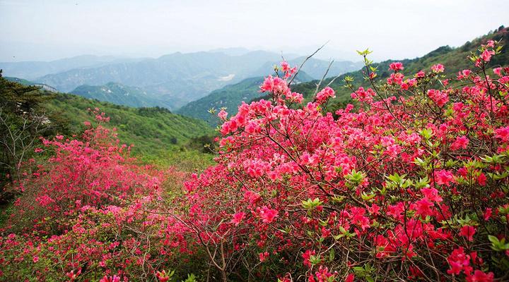 龟峰山旅游图片