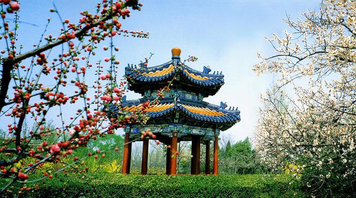 曹州百花园旅游图片