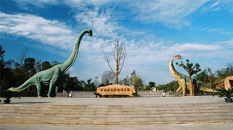 南阳旅游景点图片