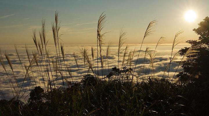 马那邦山旅游图片
