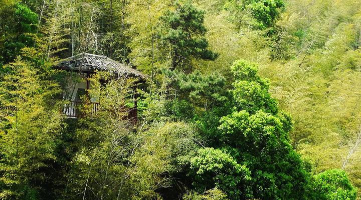 莫干山旅游图片