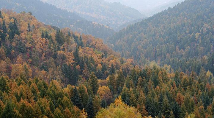 庞泉沟国家级自然保护区旅游图片