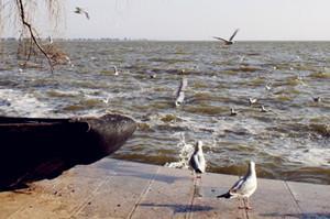 滇池海埂公园