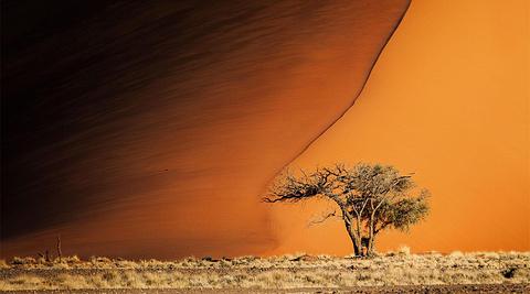 纳米比亚旅游景点图片