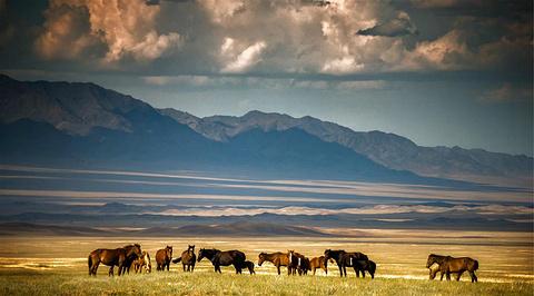 哈萨克斯坦旅游景点图片