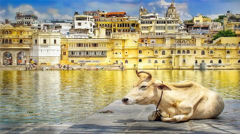 印度旅游景点图片