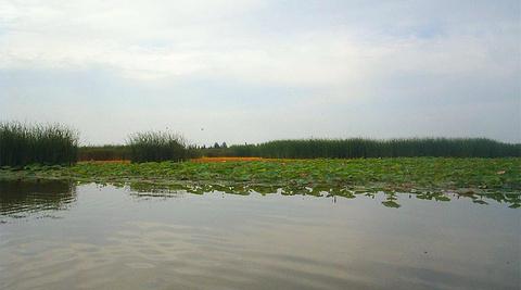 吴忠旅游景点图片