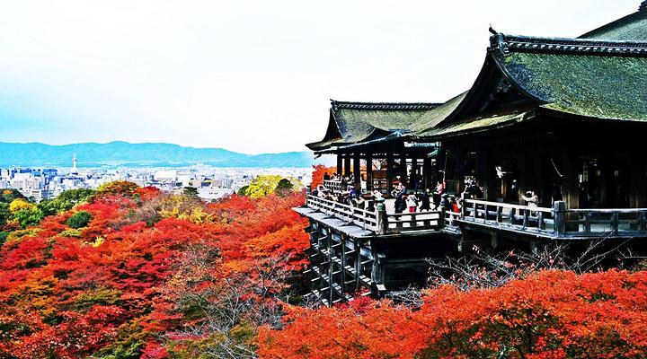 东福寺旅游图片