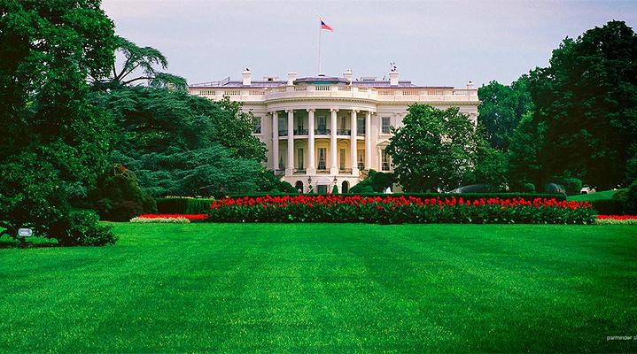 白宫旅游图片