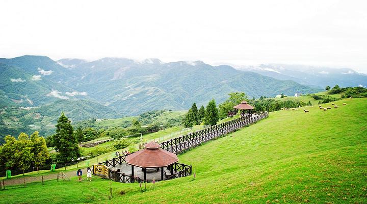 清境农场旅游图片