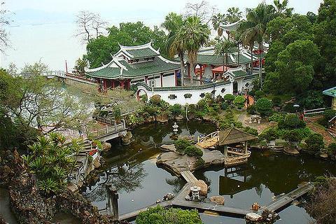 菽庄花园旅游图片