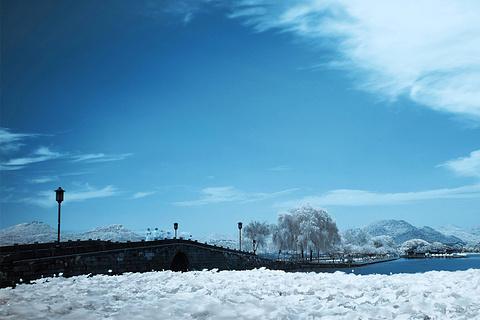断桥残雪的图片