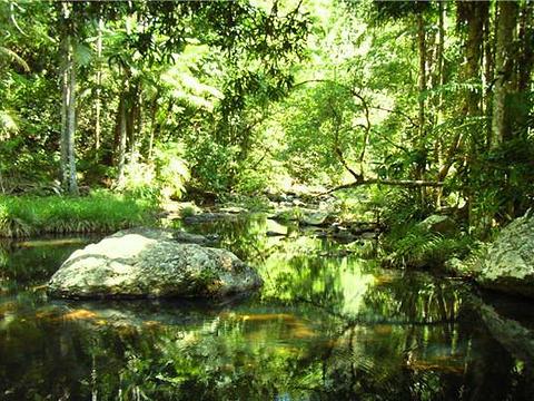 春溪国家公园旅游景点图片