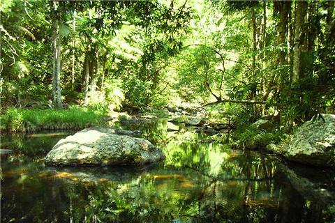春溪国家公园的图片
