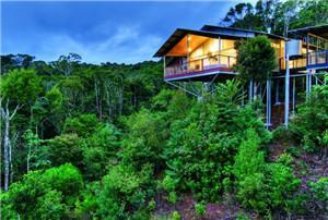 奥莱利雨林度假村