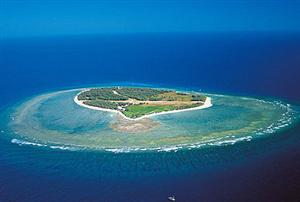 埃里奥特夫人岛