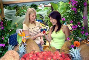 热带水果世界