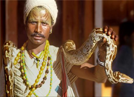 蛇节 Naga Panchami