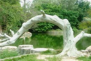 广西药用植物园