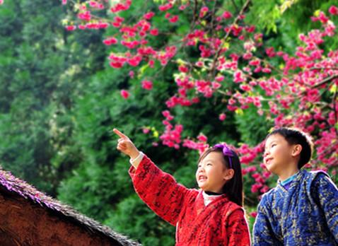 日月潭九族樱花祭