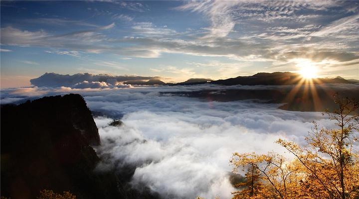 阿里山旅游图片