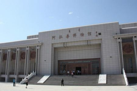阿拉善博物馆的图片