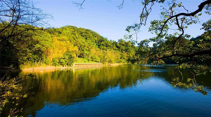 慈湖旅游图片