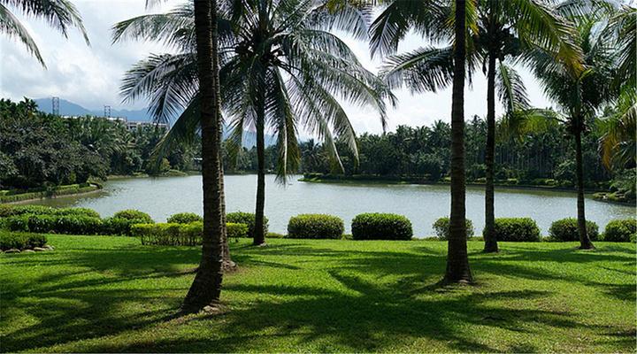 热带植物园旅游图片