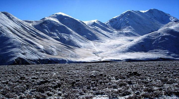 七一冰川旅游图片