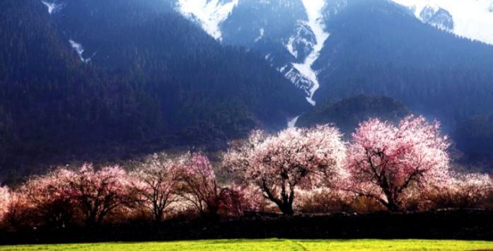 西藏江南行摄三日游