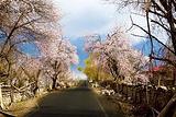 桃花沟风景区