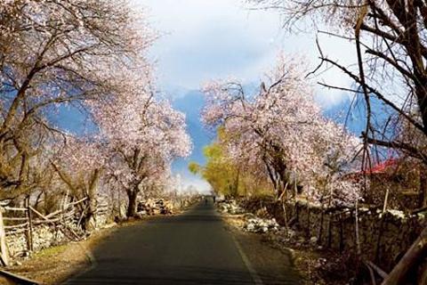 桃花沟风景区的图片