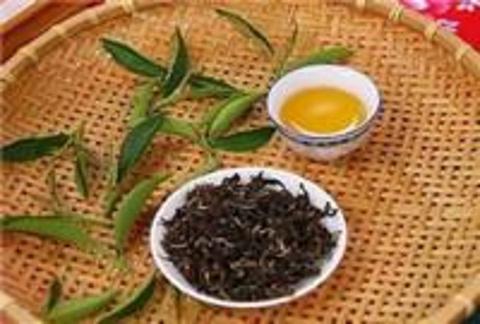 北埔膨风茶