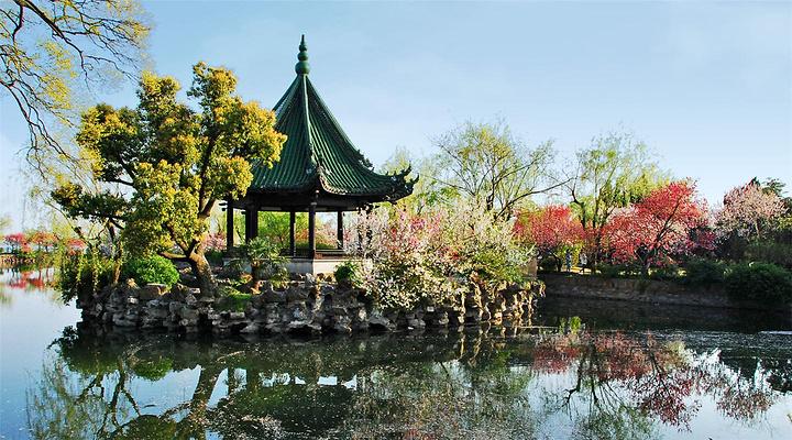蠡园旅游图片