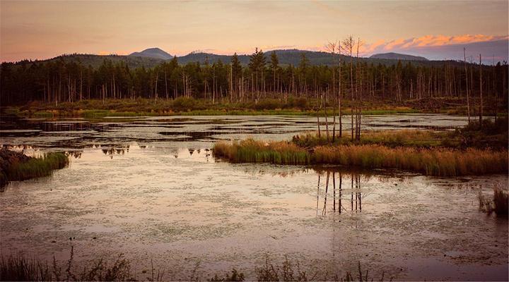 阿尔山森林公园旅游图片