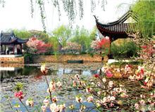 中国无锡梅花节
