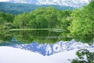 赫章国家森林公园