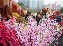 花都迎春花市