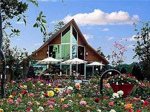 田尾公路花园旅游景点图片