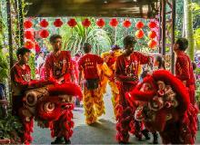 中国春节 Chinese New Year Festival