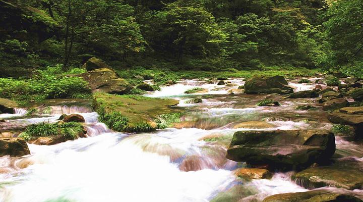 金鞭溪旅游图片