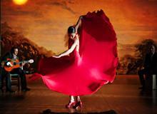 弗拉门戈大会 (Suma Flamenca)