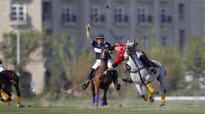 Argentina Polo Day旅游图片