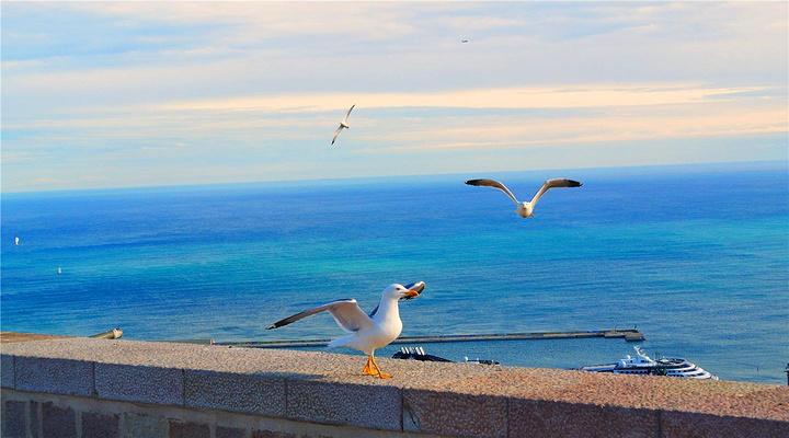 蔚蓝海岸旅游图片