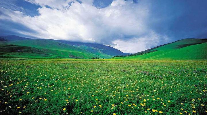 那拉提草原旅游图片