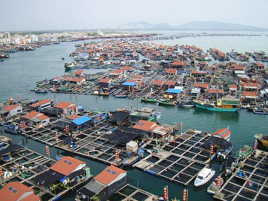 新村渔排旅游图片
