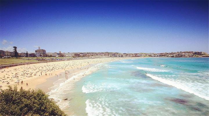 邦迪海滩旅游图片