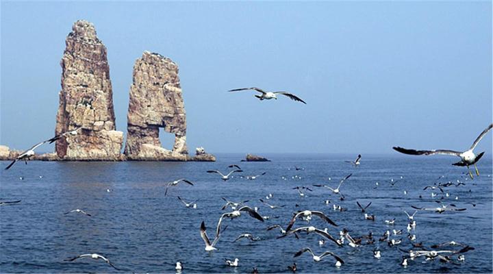 万鸟岛旅游图片