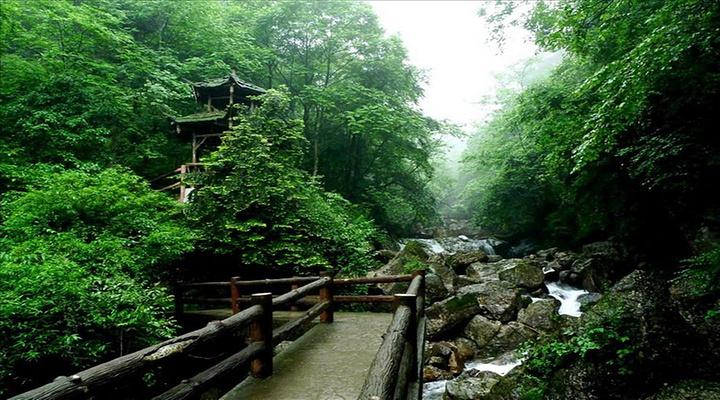 青城山后山旅游图片